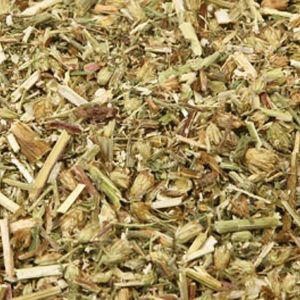 Baldwins Yarrow ( Achillea Millefolium )