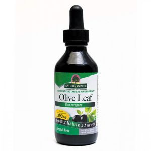 Natures Answer Olive Leaf (olea Europaea)  Alcohol Free Fluid Extract 60ml