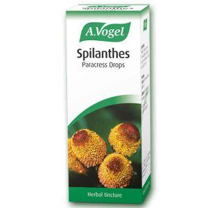 A. Vogel Spilanthes Herbal Tincture 50ml