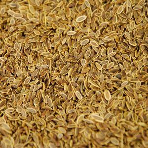 Baldwins Dill Seed ( Anethum Graveolens )