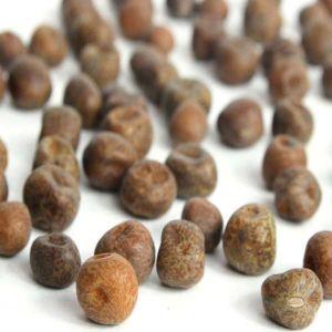 Hodmedods British Peas Organic Carlin 500g