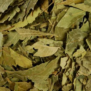 Baldwins Neem Leaves