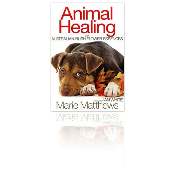 Animal Healing With Australian Bush Flower Essences By Marie