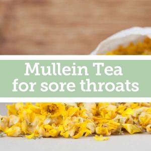 Baldwins Remedy Creator - Mullein Tea for Sore Throats