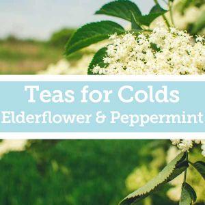 Baldwins Remedy Creator - Teas for Colds - Elderflower & Peppermint