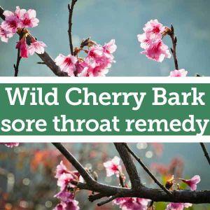 Baldwins Remedy Creator - Wild Cherry Bark Sore Throat Remedy