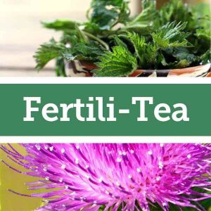 Baldwins Remedy Creator - Fertili-Tea