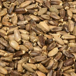 Baldwins Organic Milkthistle Seeds