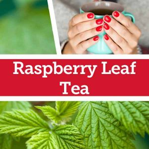 Baldwins Remedy Creator - Raspberry Leaf Tea