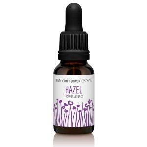 Findhorn Flower Essences Hazel 15ml