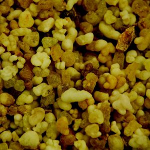 Baldwins Frankincense Grains Gum