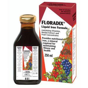 Salus Floravital Liquid Iron Formula Yeast And Gluten Free