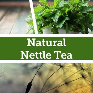 Baldwins Remedy Creator - Natural Nettle Tea