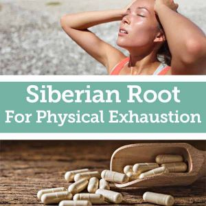 Baldwins Remedy Creator - Siberian Root For Physical Exhaustion