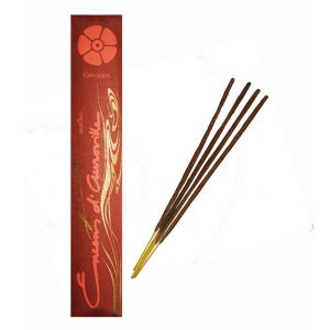 Encens D'auroville Cinnamon 10 Incense Sticks