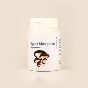 Pleurotus ( Oyster ) Mushroom Supplement 500mg 60 Capsules