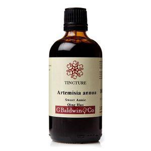 Baldwins Artemesia Annua (sweet Annie / Qing Hao) Herbal Tincture