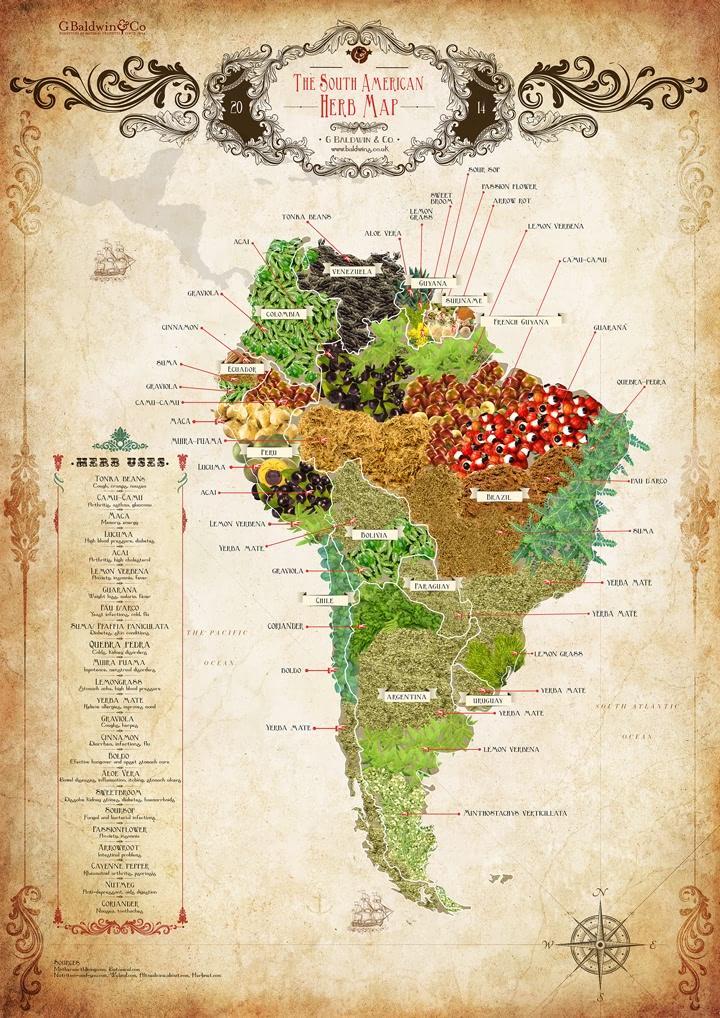 The Baldwins South American Herb Map ~ Download & Share