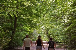 Epping Forest Lifewalk - ways to relax