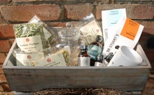 Relaxation Month Competition Main Prize - Relaxing Teas & Oils