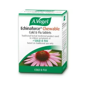 Natural Winter Remedies - Echinacea Tablets