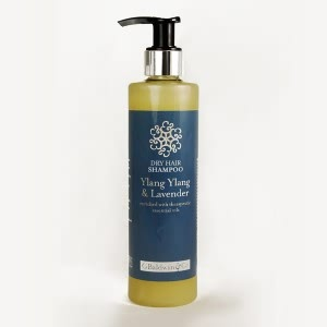 Natural Ways to Protect Your Hair in the Summer - Baldwins Synergy Ylang Ylang & Lavender Shampoo For Dry Hair