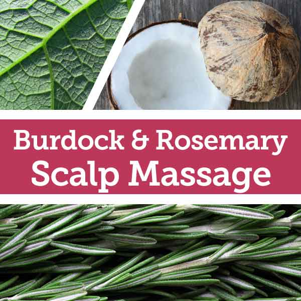 Burdock and Rosemary Natural Dry Hair Remedy