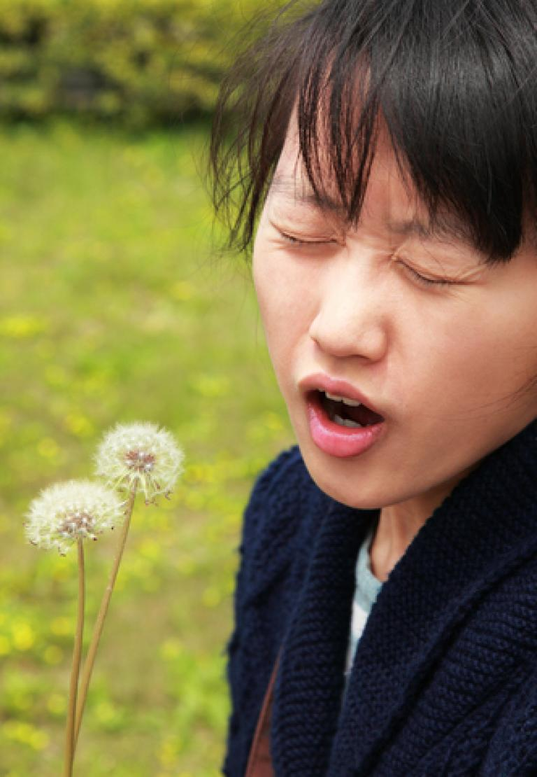 Find The Right Herbal Remedy for Your Hay Fever