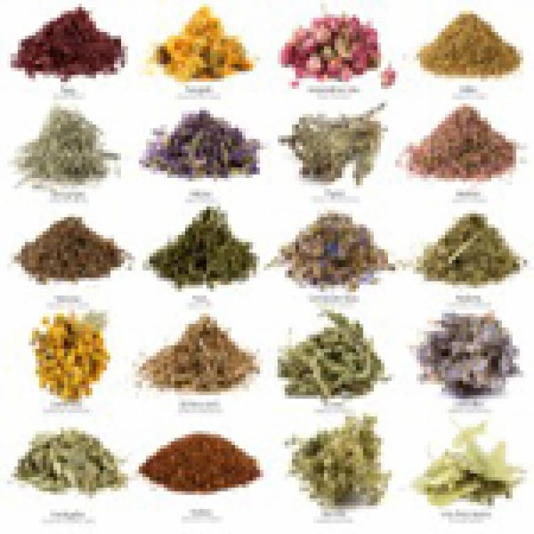 Which Of Your Herbs Compliment What Foods?