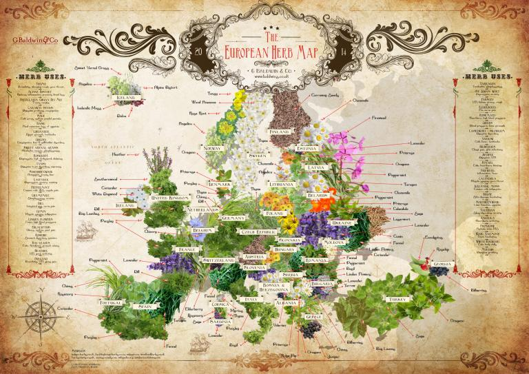 Baldwins European Herb Map - Download & Share