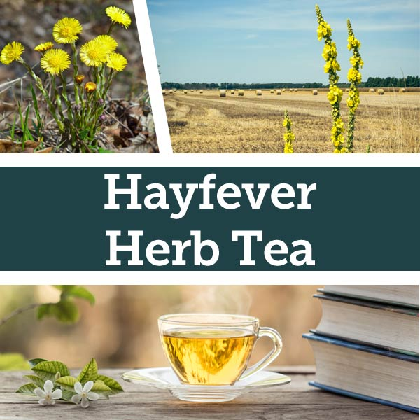 Various herbs and teas relating to the recipe