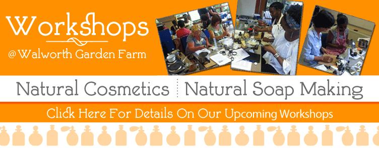 Baldwins Workshops @Walworth Garden Farm 2015